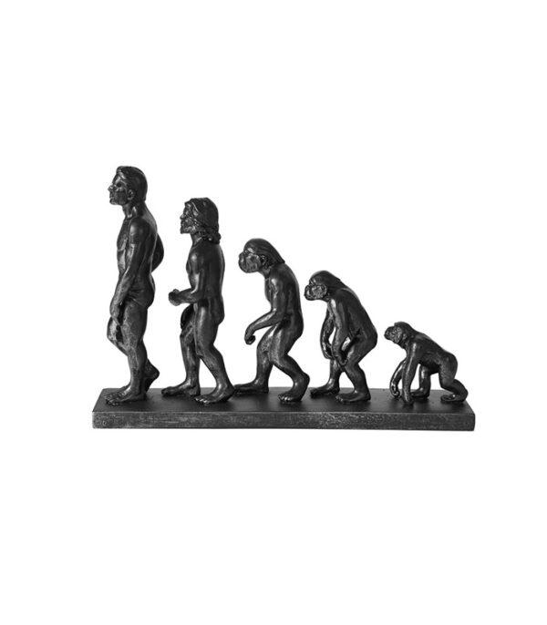 Abe til mand evolution jernfigur